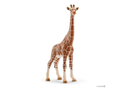 Schleich Girafe femelle