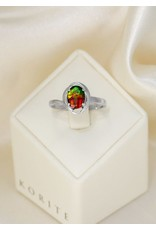 Korite Solitaire Ammolite Ring Sterling Silver