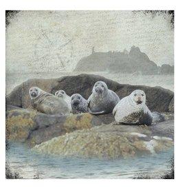 Cedar Mountain Small Art Block Seals