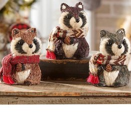 Raccoon Design Decor
