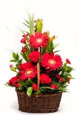 Mixed Bouquet - Plus