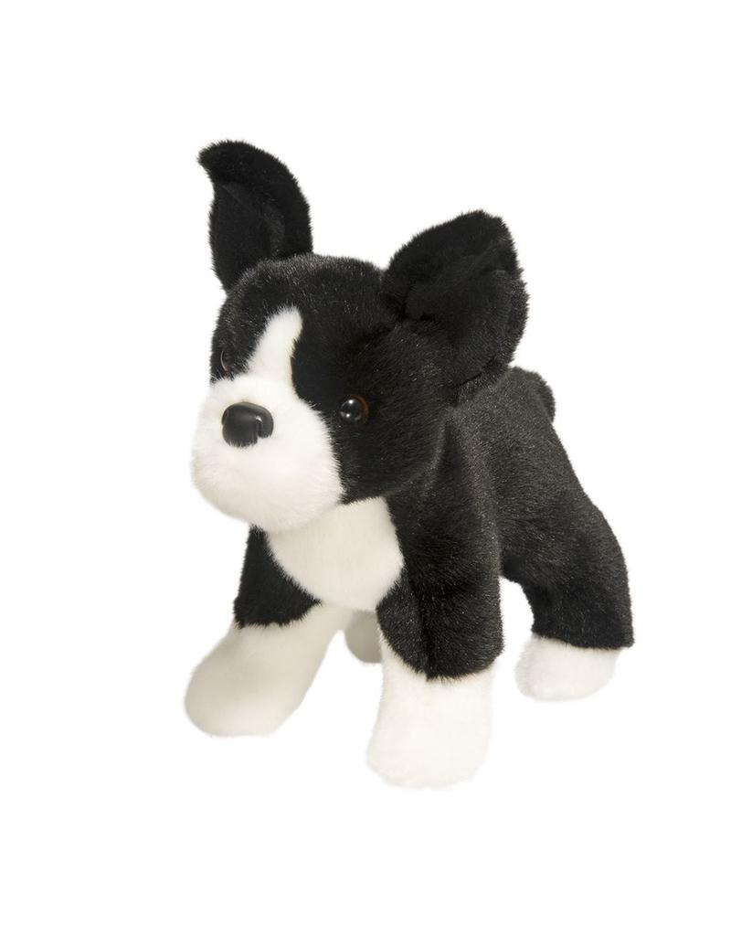 Douglas Myrtle Boston Terrier