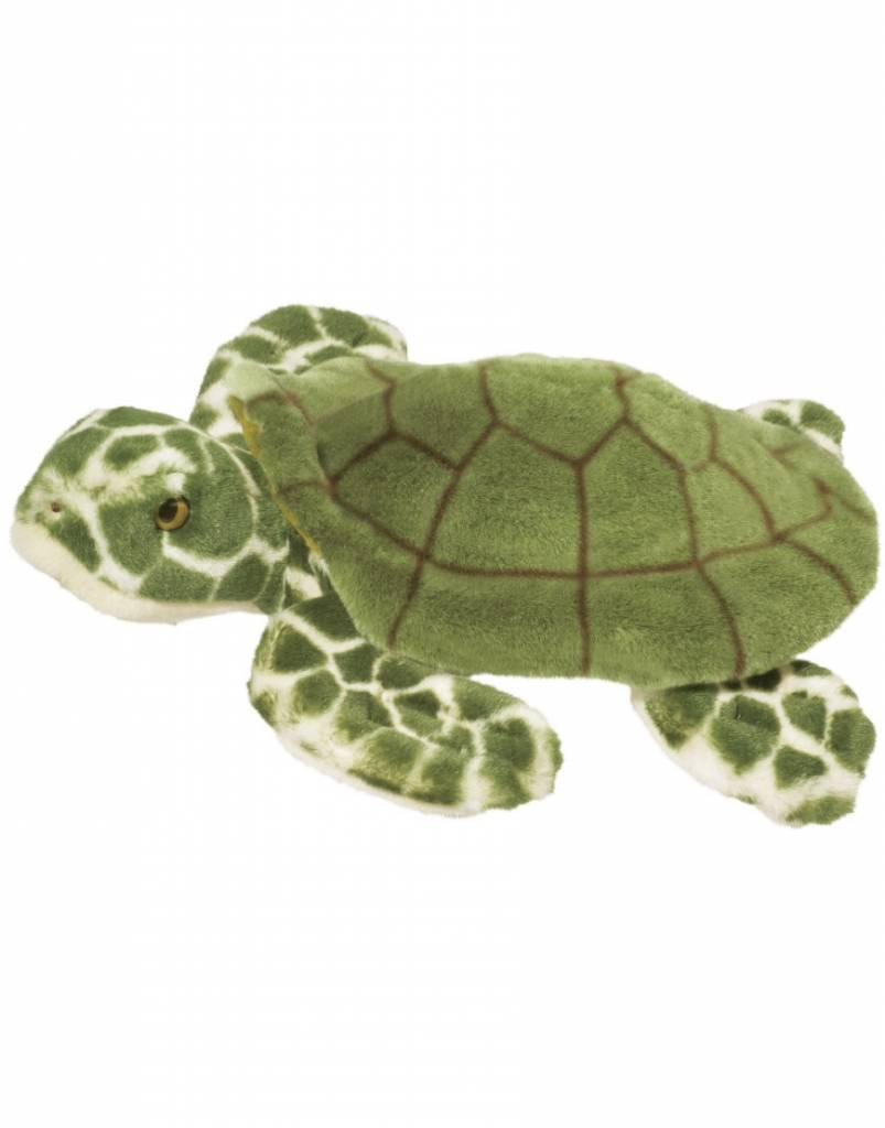 """Douglas Toti Turtle 13"""""""