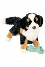 "Douglas Trevor Bernese Mountain Dog 16"""