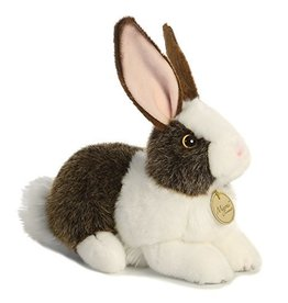 Miyoni Chocolate Dutch Rabbit