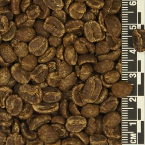 Colombia MWP Decaf *