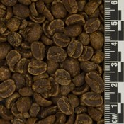 Mexico MWP Decaf *