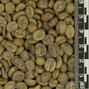 Raw Coffee Colombia El Aguila *