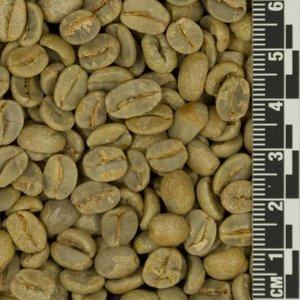 Raw Coffee Brazil Fazenda Sertao *