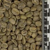 Raw Coffee Colombia El Ramal *