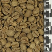 Colombia Mujer Risaralda Decaf *