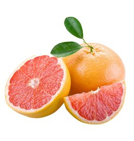 The Anointed Olive White Balsamic Grapefruit