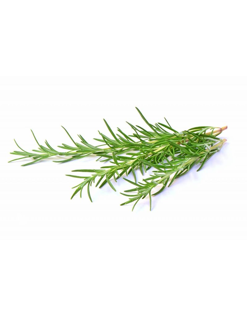 The Anointed Olive Agrumato Olive Oil Wild Rosemary