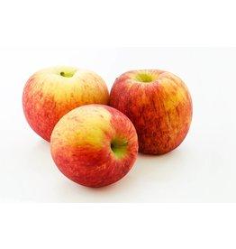 The Anointed Olive White Balsamic Gravenstein Apple