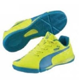 PUMA PUMA KIDS EVO SPEED STAR JR 103343