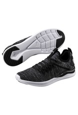 PUMA PUMA MEN'S IGNITE FLASH EVOKNIT 190508