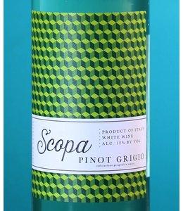 Scopa Pinot Grigio delle Venezie 2015