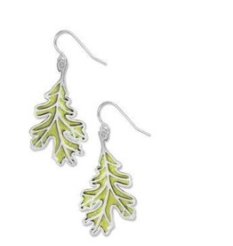 David Howell & Co. White Oak Spring Earrings
