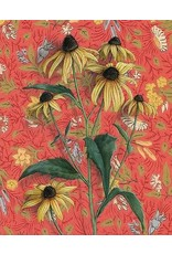 Print by Emily Uchytil - Black-eyed Susans