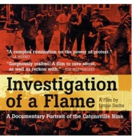 Investigation of a Flame DVD