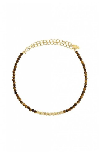Ettika Crystal Choker Tiger/Gold