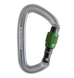 Black Diamond Black Diamond Positron Screwgate Carabiner