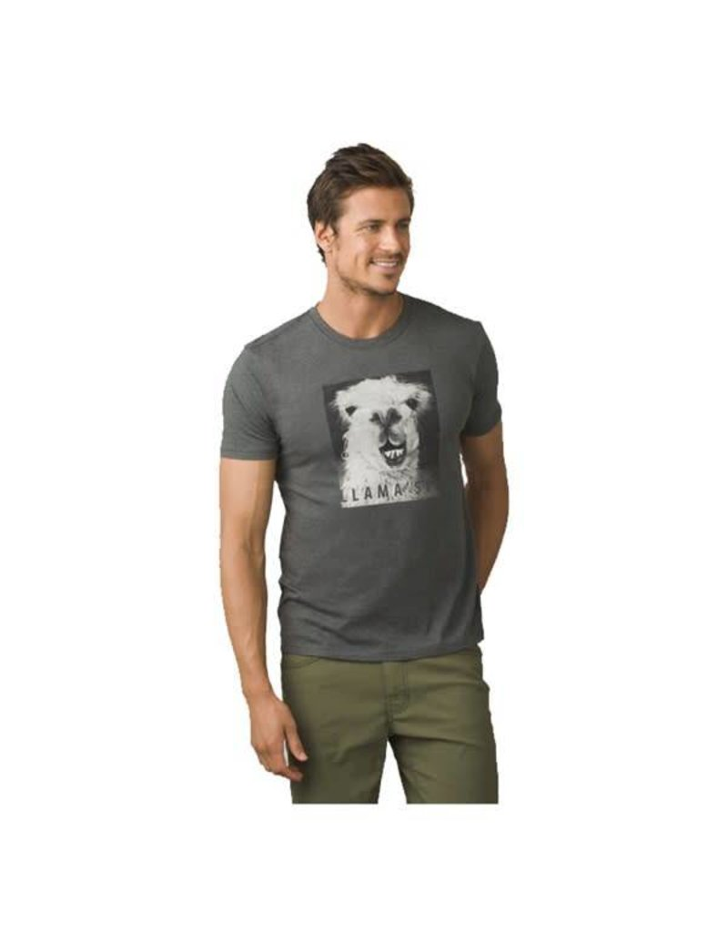 Prana PrAna Llama'ste Journeyman T-Shirt