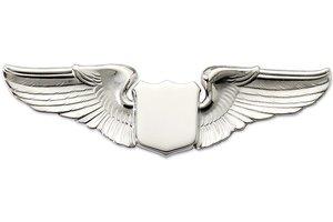 "Pin: 3"" Wing Shield Silver"