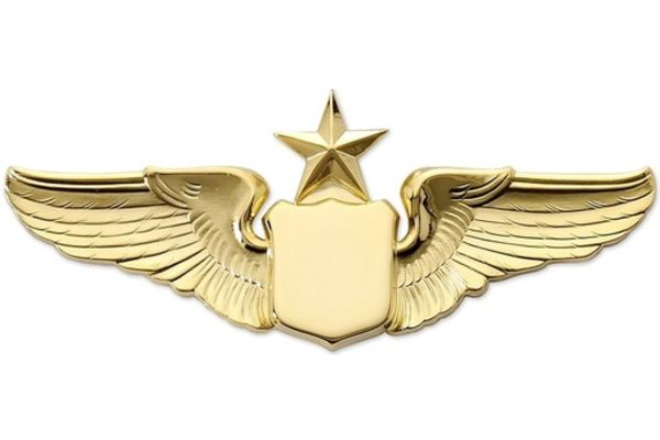 "Pin: 3"" Wing Shield w/ Star Gold"