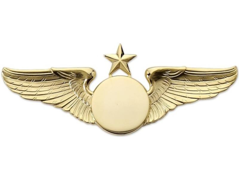 Pin: Classic Wings w/ Star Gold