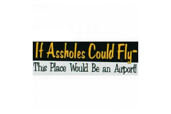 Bumper Sticker: If Assholes Could Fly
