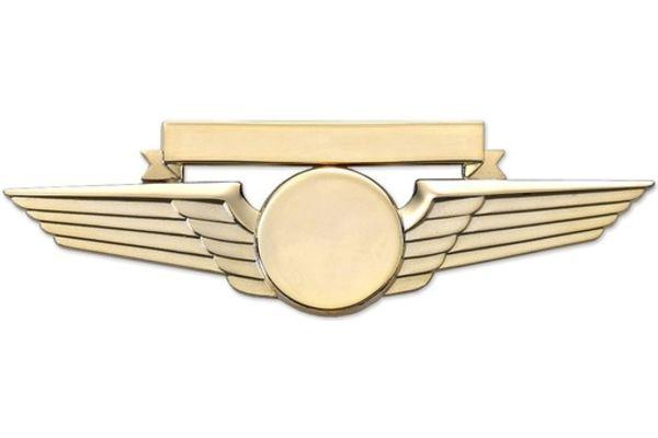 Pin: Wing w/ Nametag Gold