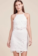 BB Dakota Bryn Lace Bodycon Dress