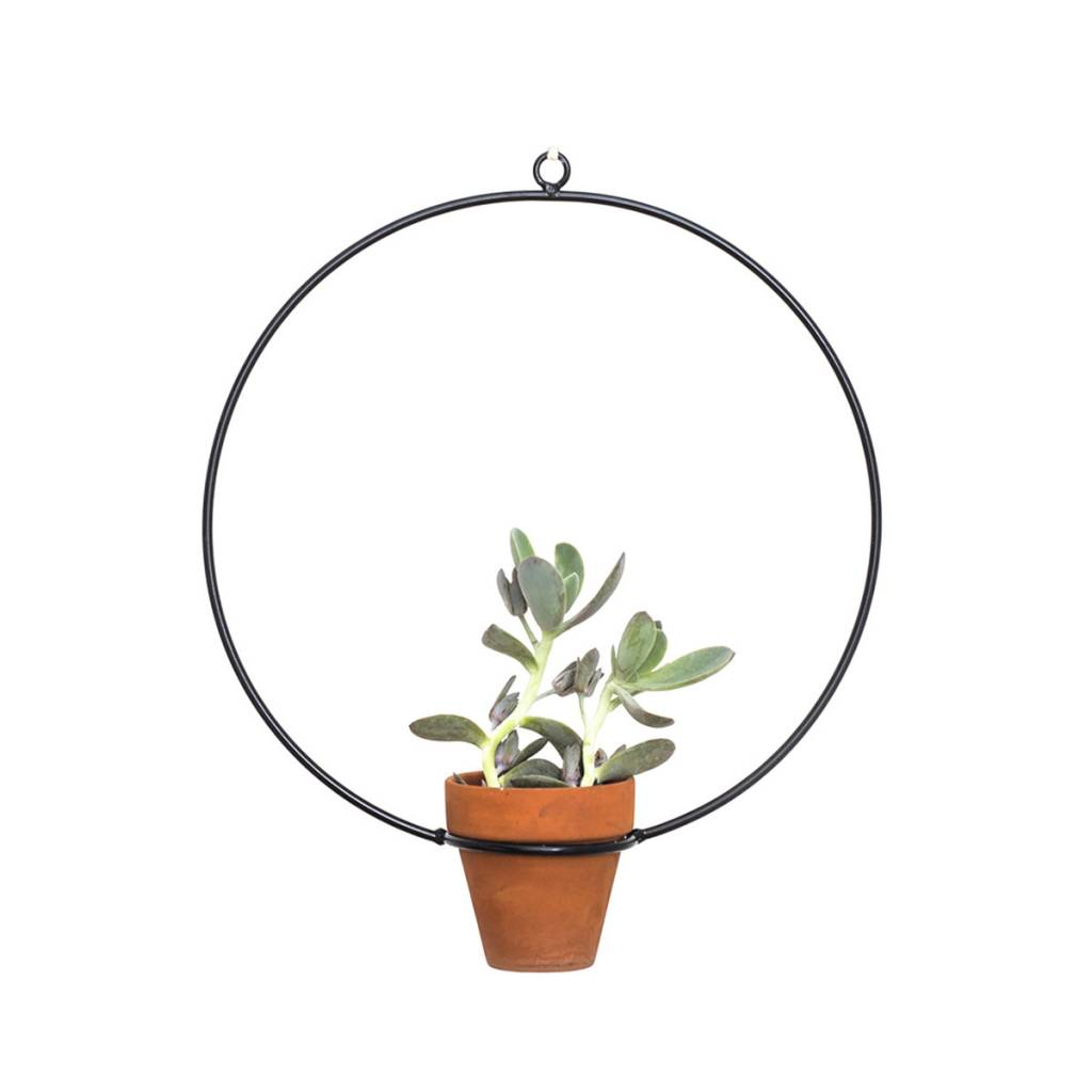 New Made LA Circle Hanging Planter by New Made LA