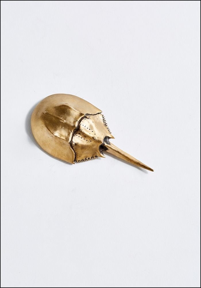 Matthew Hall Horseshoe Crab Bottle Opener