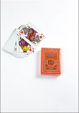Theory Animal Playing Cards
