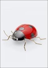 Ceramic and Brass Ladybug