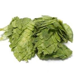 Cluster leaf hops 8.7AA 1oz.
