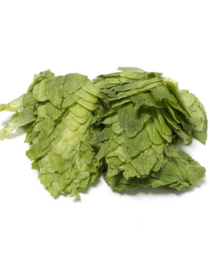 Sterling US Leaf Hops  (1oz)