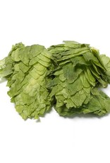 Citra leaf hops (1oz) a/a: 15.6%