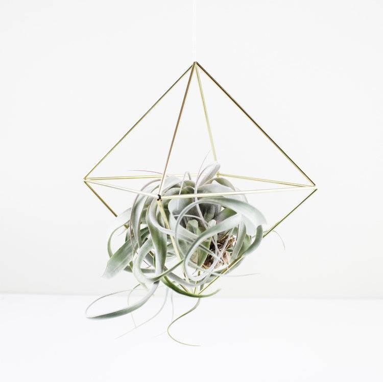DIY Brass Geometric Himmeli Kit