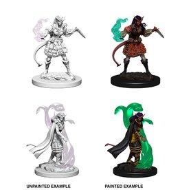 Wizk!ds D&D Nolzur's Marvelous Miniatures: Tiefling Sorcerer