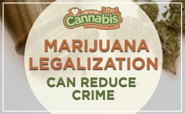 5 Reasons to Support Marijuana Legalization