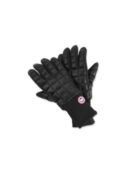 CANADA GOOSE M'S CANADA GOOSE NORTHERN GLOVE LINERS