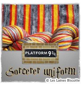 Biscotte Yarns Biscotte Yarns GRIFFON merino wool - Self-striping - Sorcerer Uniform