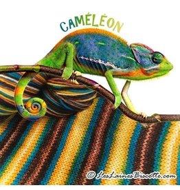 Biscotte Yarns Biscotte Yarns GRIFFON merino wool - Self-striping - Chameleon