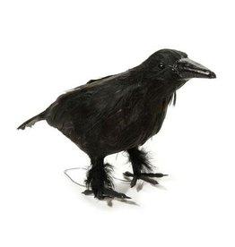 Darice Black Crow - 10 inch