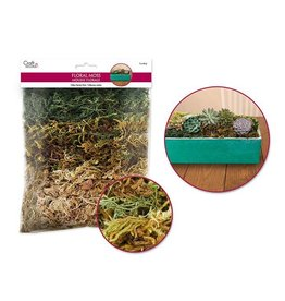 MultiCraft Preserved Naturals: 2oz 3-Moss Variety Pack (60gms)