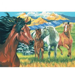Reeves Wild Horses Paint By Number