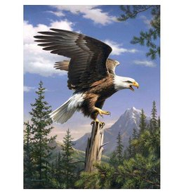 Reeves Screaming Eagles Paint By Number